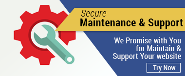 bluethink_maintenance_and_support